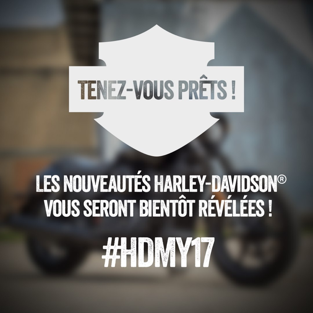 Hdmy17